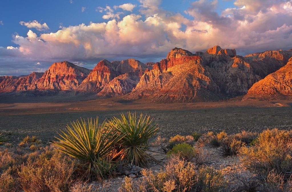 Trail linking Red Rock Canyon to Summerlin under consideration
