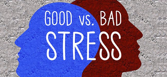 Does stress have benefits? A certain form of stress may be linked to longer life, say scientists