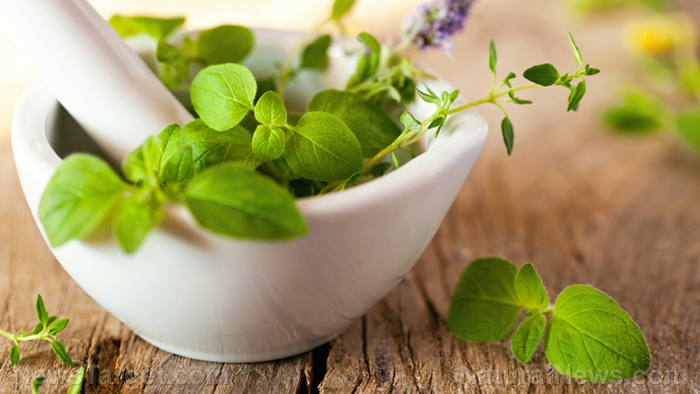 These herbs can protect your skin from cancer, says research