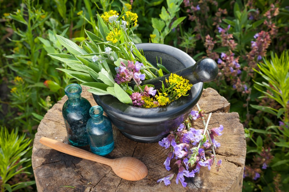 Homesteading 101: 8 Ways to preserve medicinal herbs
