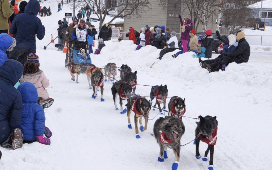 Iditarod race starts with pageantry and focus on preventing disease spread
