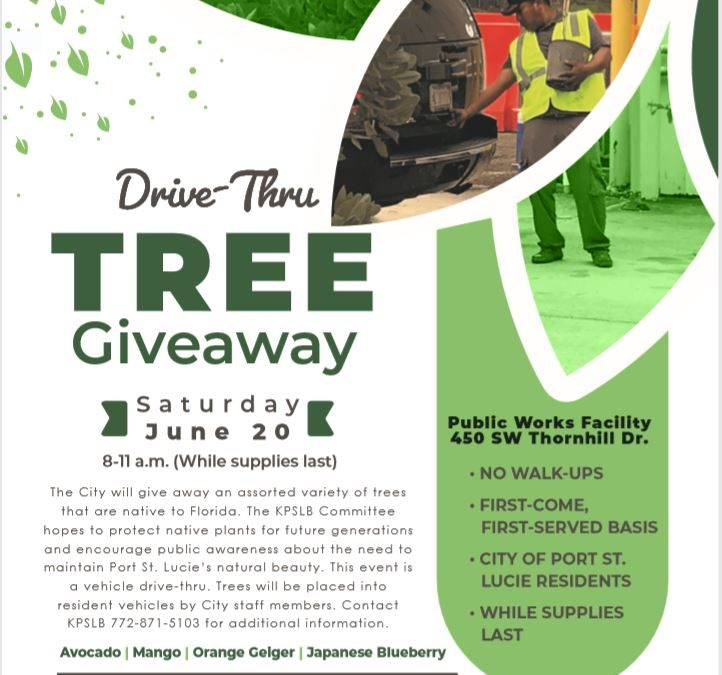 Drive Thru Tree Giveaway