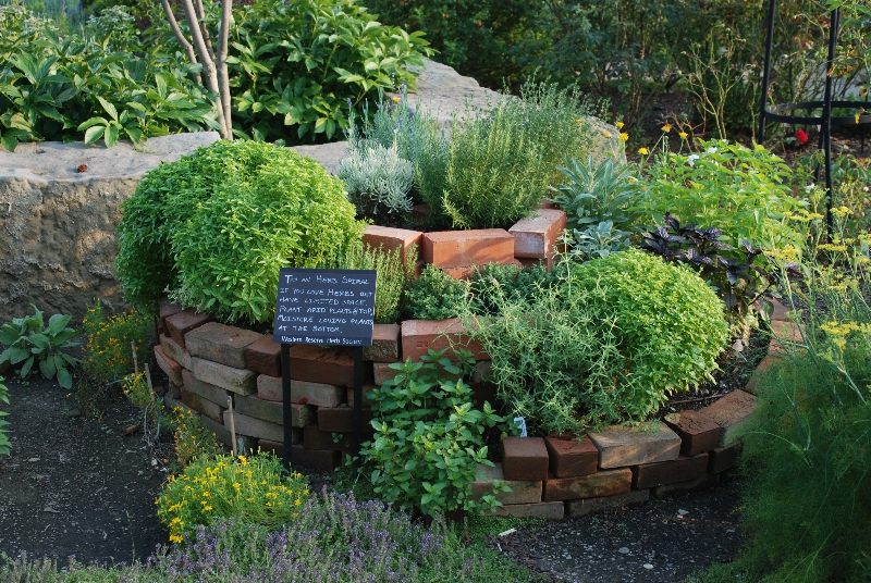 Home gardening basics: How to build an herb spiral