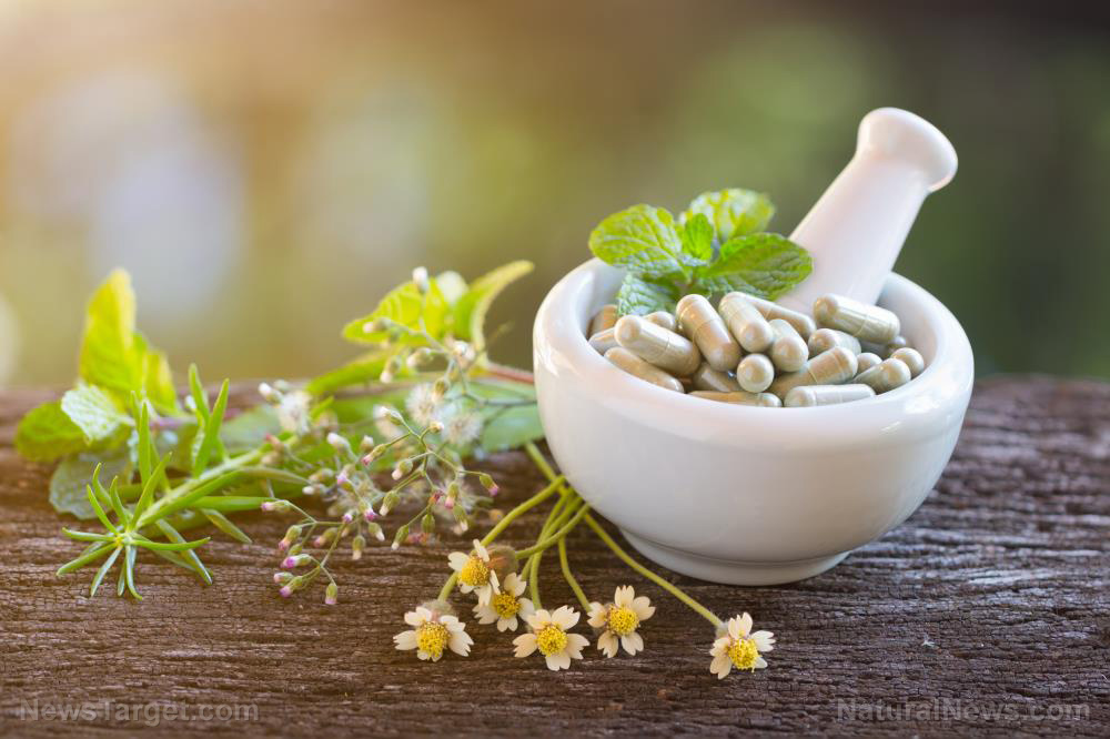 Researchers identify alternative and complementary medicines for kidney disorders