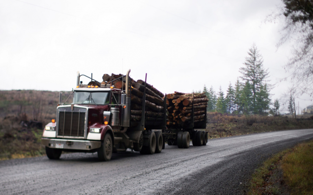 Big Money Bought the Forests. Small Logging Communities Are Paying the Price.