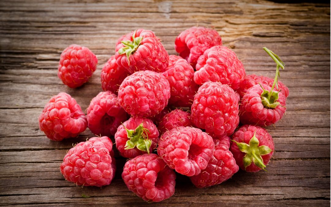 Phenolic-enriched raspberry extract can decrease weight gain – even when eating a high-fat diet