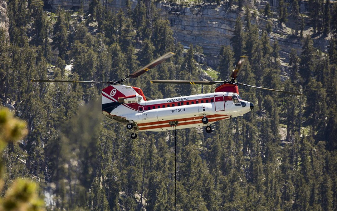 Mahogany Fire at Mount Charleston 100% contained