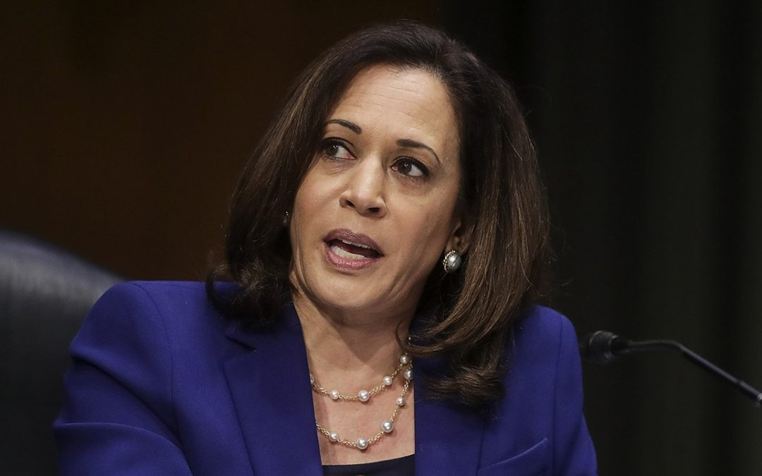 THERE'S A WAR GOING ON OVER KAMALA HARRIS'S WIKIPEDIA PAGE, WITH UNFLATTERING ELEMENTS VANISHING