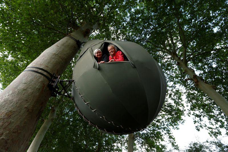 Belgians holiday in trees as  become more popular