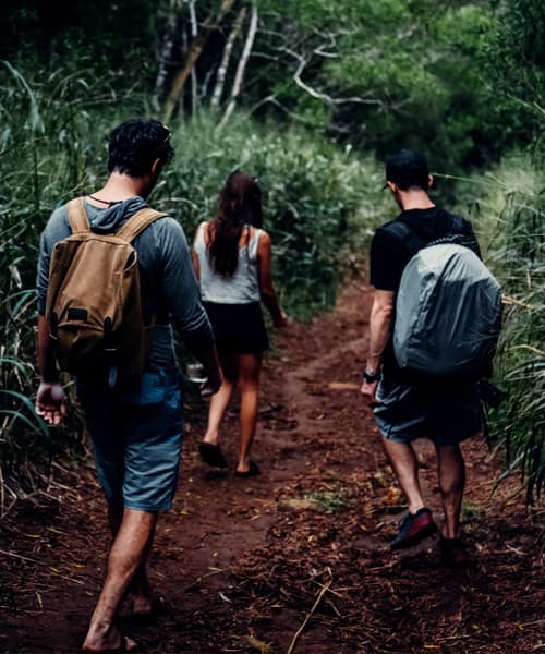 How to stay safe while hiking in the  the great outdoors
