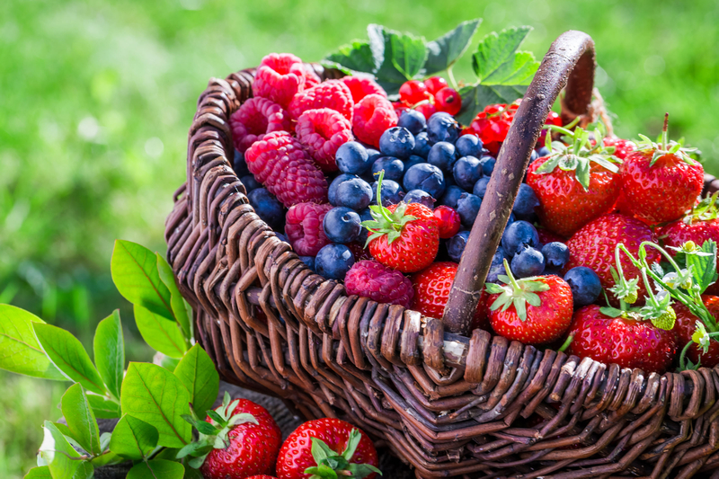 Eating more flavonoid-rich foods can stave off disease and lower cancer risk, advise researchers
