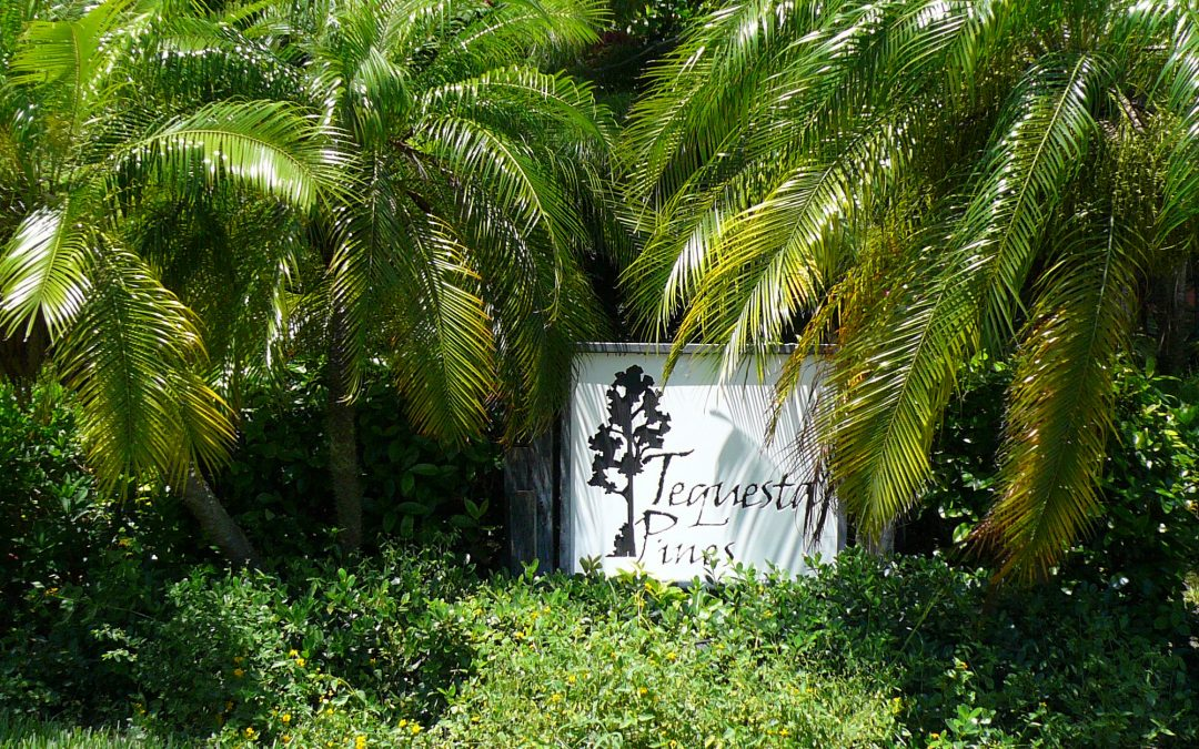 NEW LISTING IN TEQUESTA PINES!