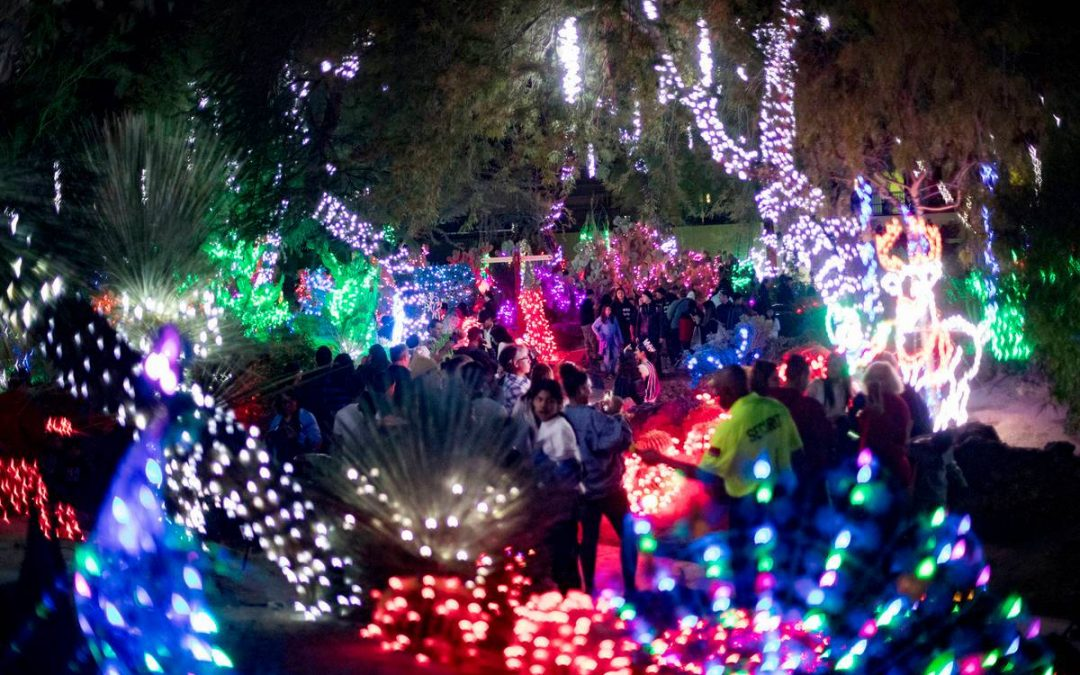 Ethel M's cactus garden will light up for the holidays