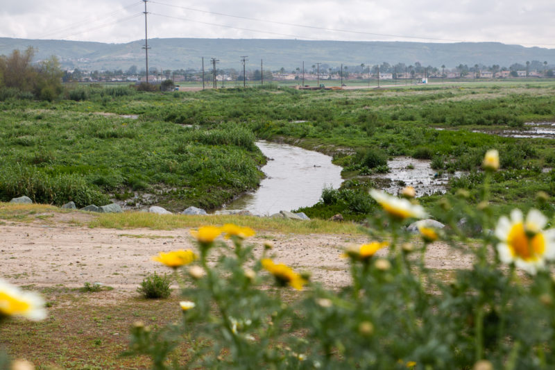 Two Companies See a Golden Opportunity in the Tijuana River's Brown Waters