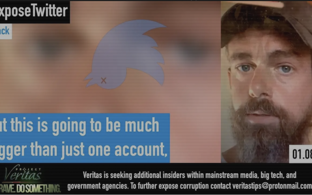"""""""This is Going to be MUCH BIGGER Than Just One Account"""": Whistleblower Records Twitter CEO Discussing Censorship"""
