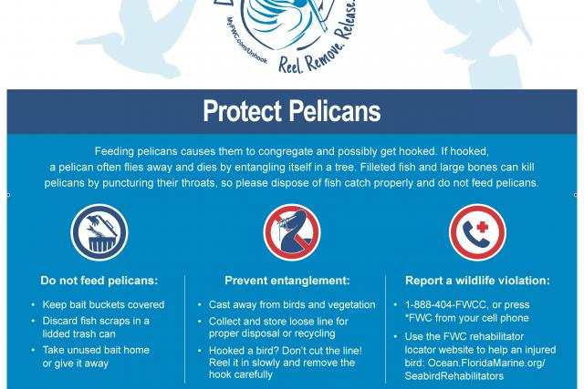 NOAA and Partners Promote Fisheries Conservation in Florida