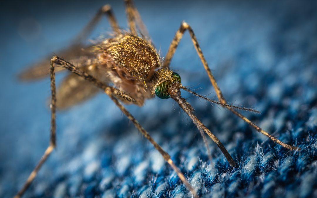 Jefferson County Mosquito Control