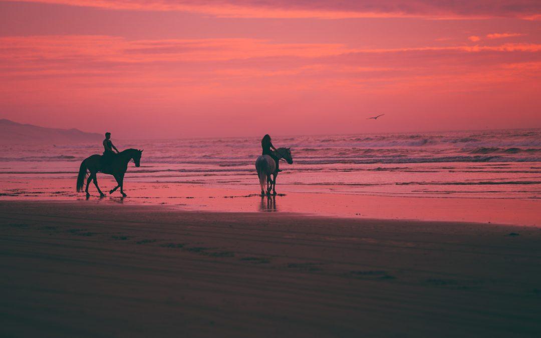 Go Horseback Riding on the Beach:  South Georgia