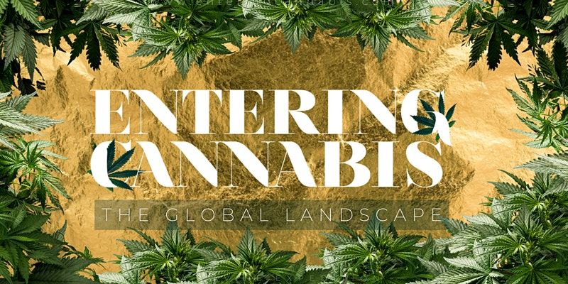 ENTERING CANNABIS: The Global Landscape – Developments In Puerto Rico
