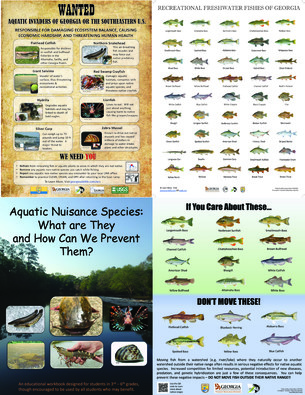 Georgia DNR Education and Outreach: Three New Posters and a Workbook Now Available