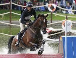 Ad-Tesla Horse Racing / Equestrian Horse Racing / Equestrian [your]NEWS