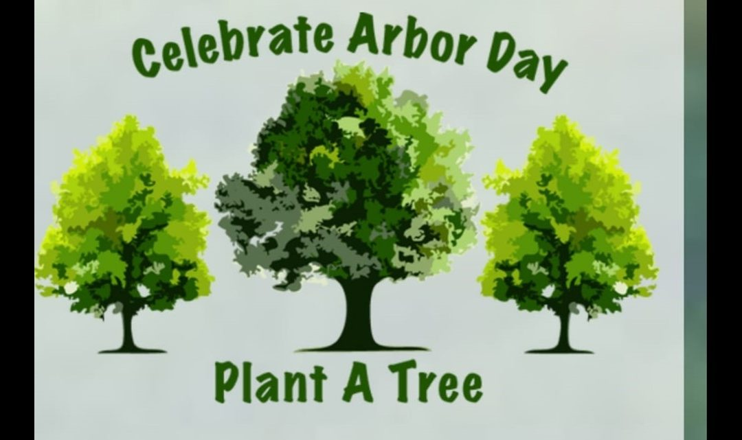Free Trees for Arbor Day