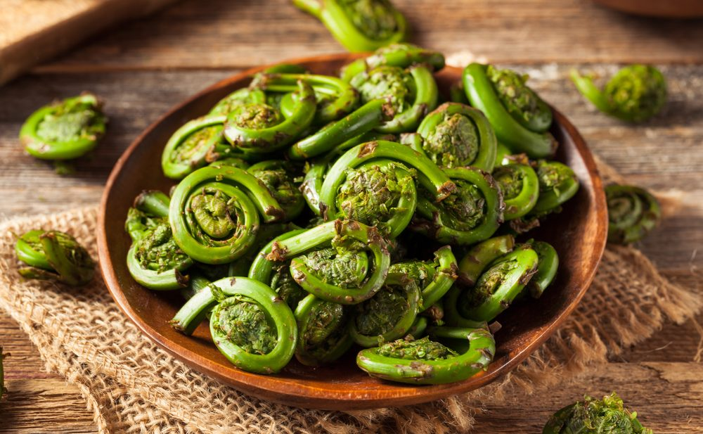 Good as an appetizer or a side dish this fiddlehead recipe is sure to please
