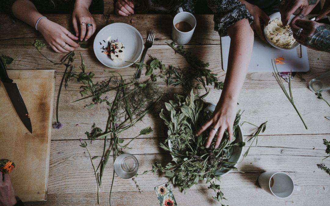 13 Medicinal Herbs for Your Garden
