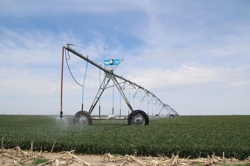 Farmers Trying To Save The Ogallala Aquifer Face Tension From Peers, But Their Profits Are Improving