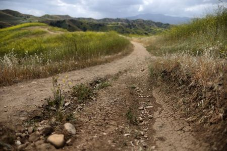 California governor declares drought emergency in 41 counties