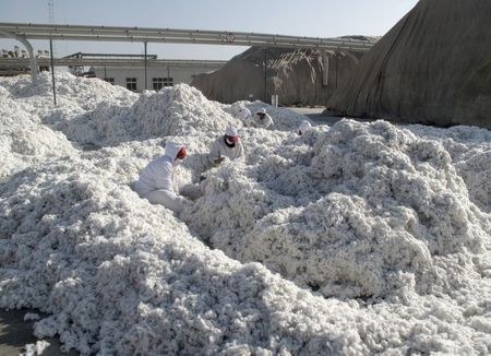 tagreuters.com2021binary_LYNXMPEH0C1XO-VIEWIMAGE U.S. bans imports of all cotton, tomato products from China's Xinjiang region Business [your]NEWS