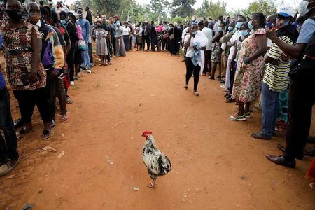 tagreuters.com2021binary_LYNXMPEH0D0U7-VIEWIMAGE Ugandans choose between long-time leader and popstar politician World [your]NEWS