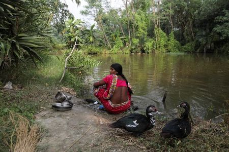 tagreuters.com2021binary_LYNXMPEH0C1V5-VIEWIMAGE Tigers stalk as storms, poverty force Indians deep into mangrove forests World [your]NEWS