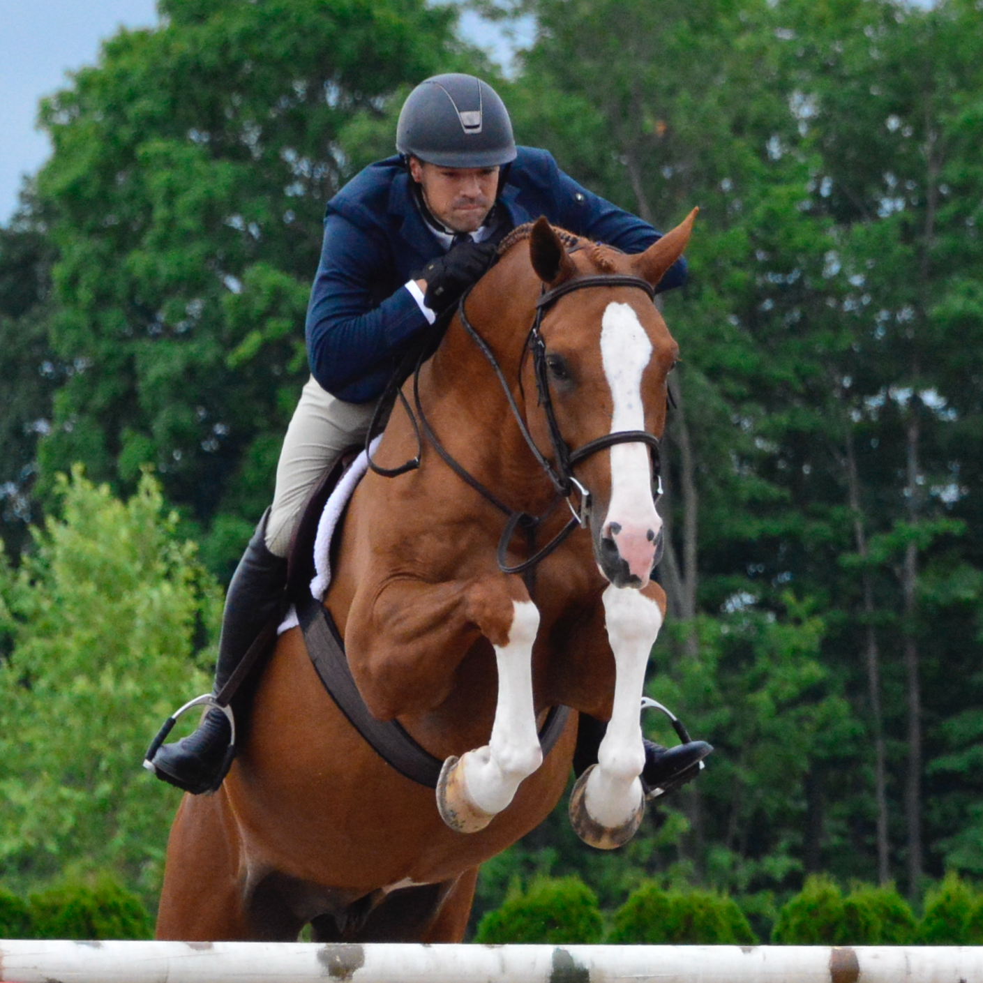 Terra-Plush-Fleece-Fancy-Stitch-Natural-Coiled-600x600 Greener Pastures Ahead with Oaklyn's Ecofriendly Girths Horse Racing / Equestrian [your]NEWS